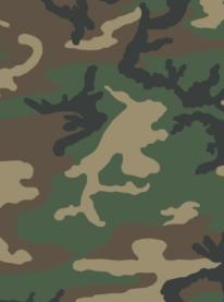 Originall US Arma Woodland Pattern
